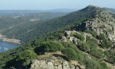 Naturarte, música y naturaleza en Monfragüe