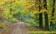 Ruta de las Juderías (Valle del Jerte – Valle del Ambroz)