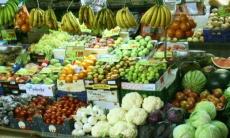 Alimentos y hábitos Anti-Cáncer Y Pro-longevidad